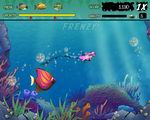 Free download Feeding Frenzy game